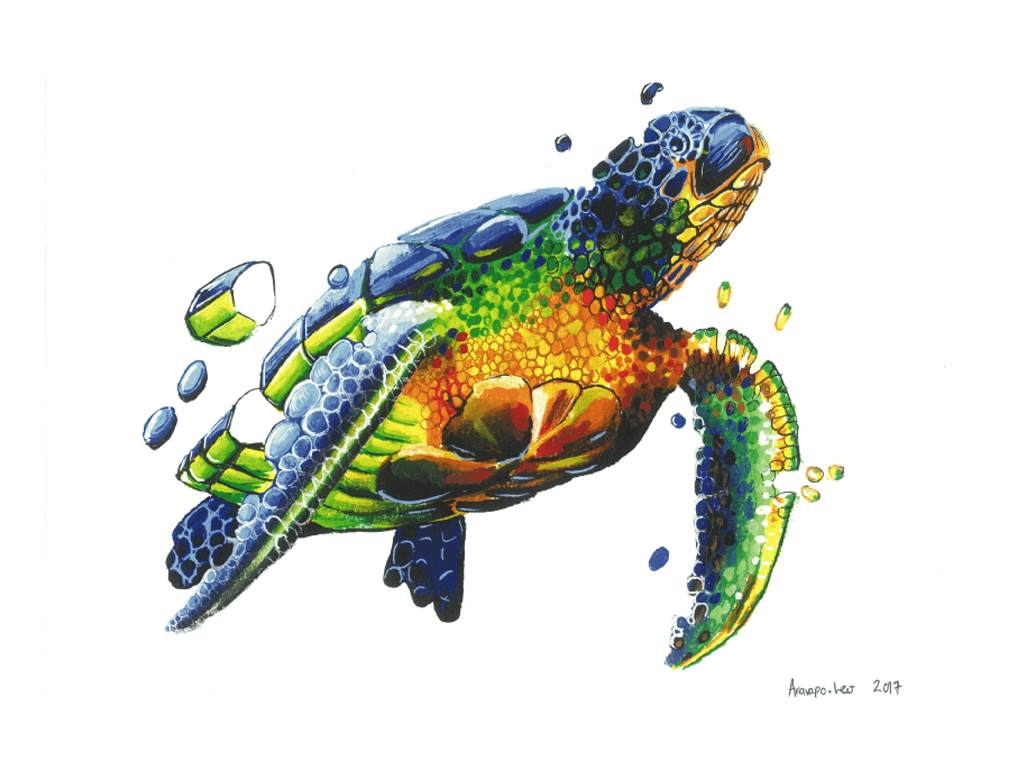 sea turtle art show